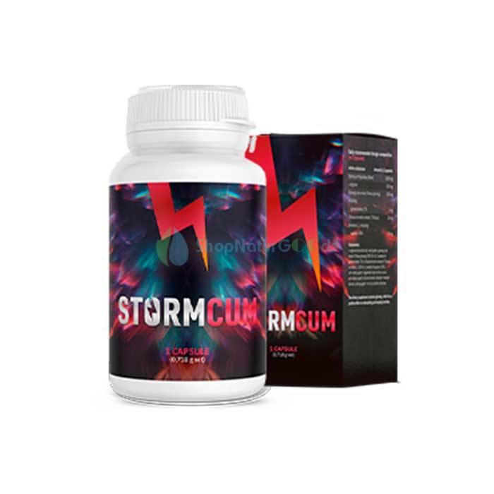 Stormcum v České republice